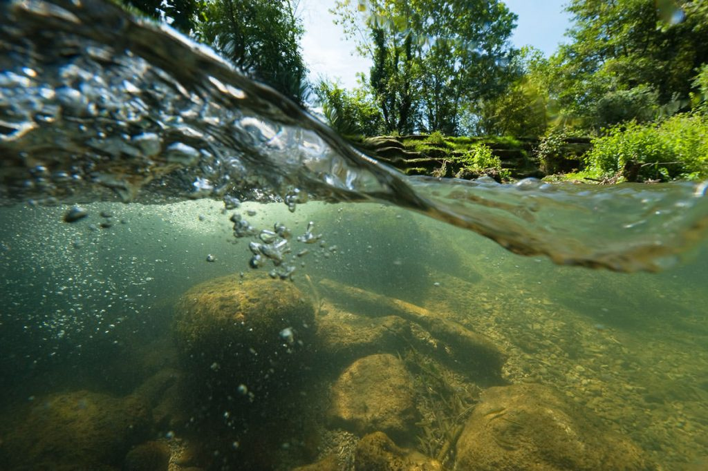 Secrets de rivières